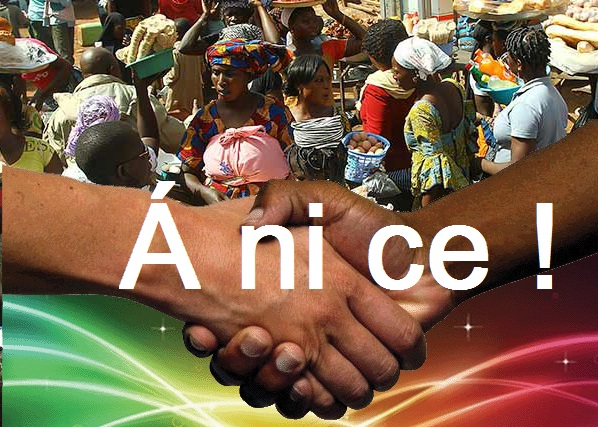 Anice02